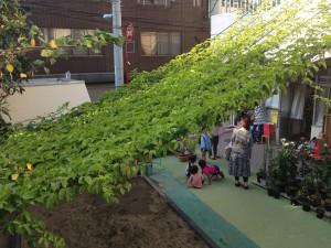 設置例3育英幼稚園4